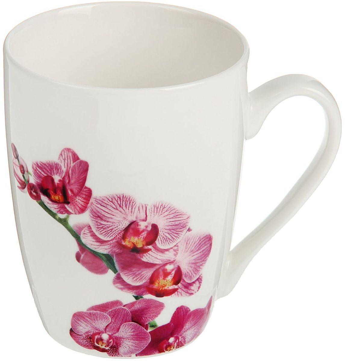 Кружка Доляна Орхидея, 350 мл1625285Кружка Доляна Орхидея изготовлена из высококачественной керамики. Изделие оформлено красочным рисунком и покрыто превосходной сверкающей глазурью. Изысканная кружка прекрасно оформит стол к чаепитию и станет его неизменным атрибутом.