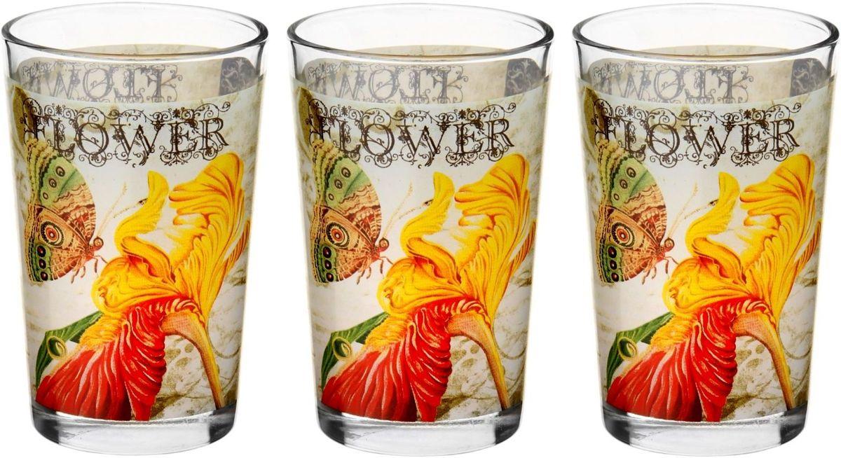 Набор стаканов Доляна Желтый ирис, 250 мл, 3 шт230269Набор Доляна Желтый ирис включает 3 стакана из прочного стекла. Изделия дополнены красочным рисунком. Такой набор стаканов пригодится на любой кухне. Относитесь к изделиям бережно, и они будут дарить прекрасное настроение каждый день.