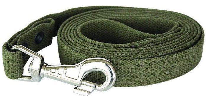 Поводок брезентовый для собак Adel-Dog, длина 2 м990809Поводок для собак Adel-Dog, изготовленный извысококачественной брезентовой ткани, снабженметаллическим карабином.Изделие отличается не только исключительнойнадежностью и удобством, но и привлекательнымдизайном. Поводок - необходимый аксессуар для собаки. Ведьв опасных ситуациях именно он способен спасти жизньвашему любимому питомцу. Иногда нужно ограничиватьсвободу своего четвероногого друга, чтобы защитить егоили себя от неприятностей на прогулке.Длина поводка: 2 м.