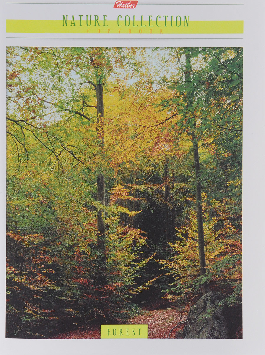 Hatber Тетрадь Forest 96 листов в клетку hatber тетрадь полосатый мир 96 листов в линейку цвет оранжевый
