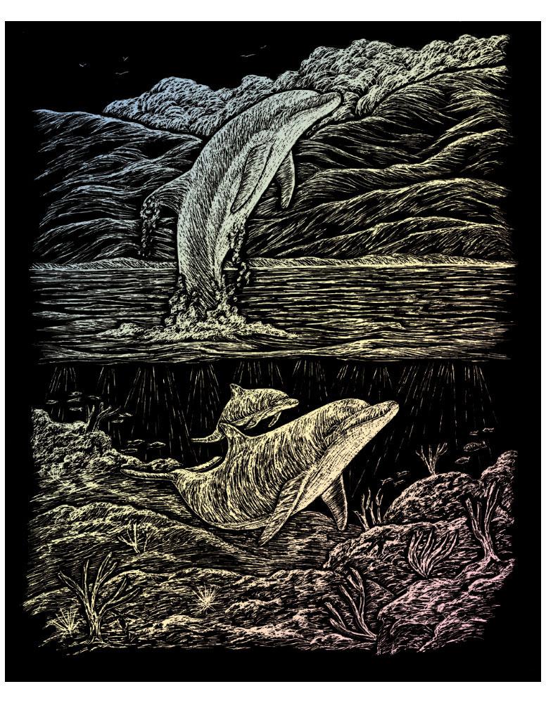 Royal & Langnickel Гравюра с голографическим эффектом Дельфин