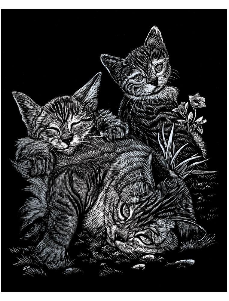 Royal & Langnickel Гравюра с серебряным эффектом Кошка с котятами