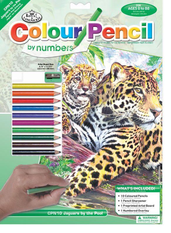 Royal & Langnickel Раскраска Ягуары