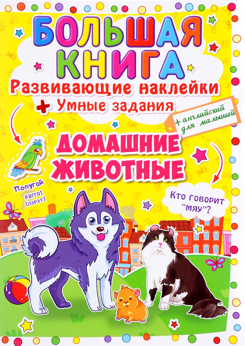 Zakazat.ru: Большая книга. Развивающие наклейки. Умные задания. Домашние животные