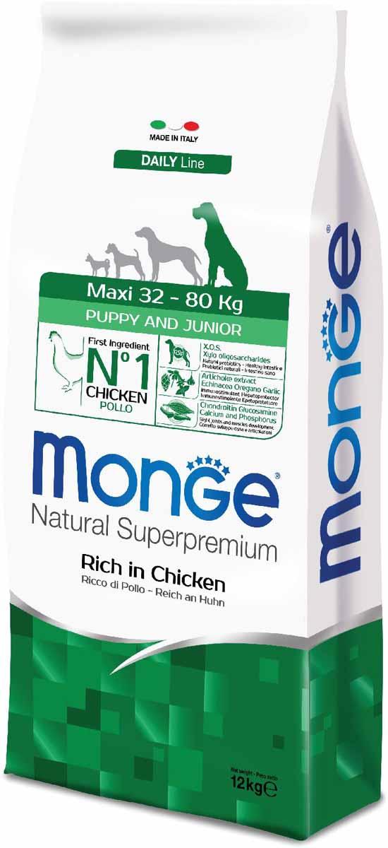 Корм сухой Monge Dog Maxi, для щенков крупных пород, 12 кг70011709Monge Dog Maxi корм для щенков крупных пород, 12 кг.Полнорационный корм для собак на основе мяса цыпленка и риса. Рекомендуется для щенков и молодых собак крупных пород возрастом от 2 до 12 месяцев, а также для беременных и кормящих животных. Анализ компонентов: сырой белок 28,00%, сырые масла и жиры 16,00%, сырая клетчатка 2,00%, сырая зола 7,00%, кальций 1,50%, фосфор 1,10%, омега-6 жирные кислоты 6,50%, омега-3 жирные кислоты 0,90%.Пищевые добавки/кг: витамин А 26000 МЕ, витамин D3 1820 МЕ, витамин Е 200 мг, витамин В1 20 мг, витамин В2 25 мг, витамин В6 12 мг, витамин В12 240 мг, биотин 32 мг, ниацин 50 мг, витамин С 175 мг, пантотеновая кислота 30 мг, фолиевая кислота 2,80 мг, холина хлорид 3200 мг, инозитол 6,00 мг, Е5 сульфат марганца моногидрат 32 мг, Е6 оксид цинка 150 мг, Е4 сульфат меди пентагидрат 13 мг, Е1 сульфат железа моногидрат 110 мг, Е8 селенит натрия 0,20 мг, Е2 йодат кальция 1,80 мг, L-карнитин 140 мг, DL-метионин 7,20 г. Технологические добавки/кг: натуральная смесь из токоферола и экстракта розмарина обыкновенного. Органолептические добавки/кг: натуральный экстракт каштана 20 мг, экстракт артишока 300 мг.Энергетическая ценность: 4 150 ккал/кг.Ингредиенты: курица (32% дегидрированного и 10% свежего мяса), рис, кукуруза, животный жир (куриный жир 99,6%, консервированный с помощью натуральных антиоксидантов), сухая свекольная пульпа, пивные дрожжи (источник МОС и витамина B12), кукурузнаяглютеновая мука, гидролизованный животный белок, овес (источник ценных пищевых волокон), сухое цельное яйцо (с высоким содержанием ценных белков), рыба (дегидрированный лосось), рыбий жир (масло лосося), КОС (ксилоолигосахариды 3г/кг), гидролизованные дрожжи (источник МОС), юкка Шидигера, спирулина, гидролизованные хрящи (источник хондроитина сульфата), гидролизованные ракообразные (источник глюкозамина), метилсульфонилметан, корнень эхинацеи, орегано, порошок сушеного чеснока. Индивидуальная непер