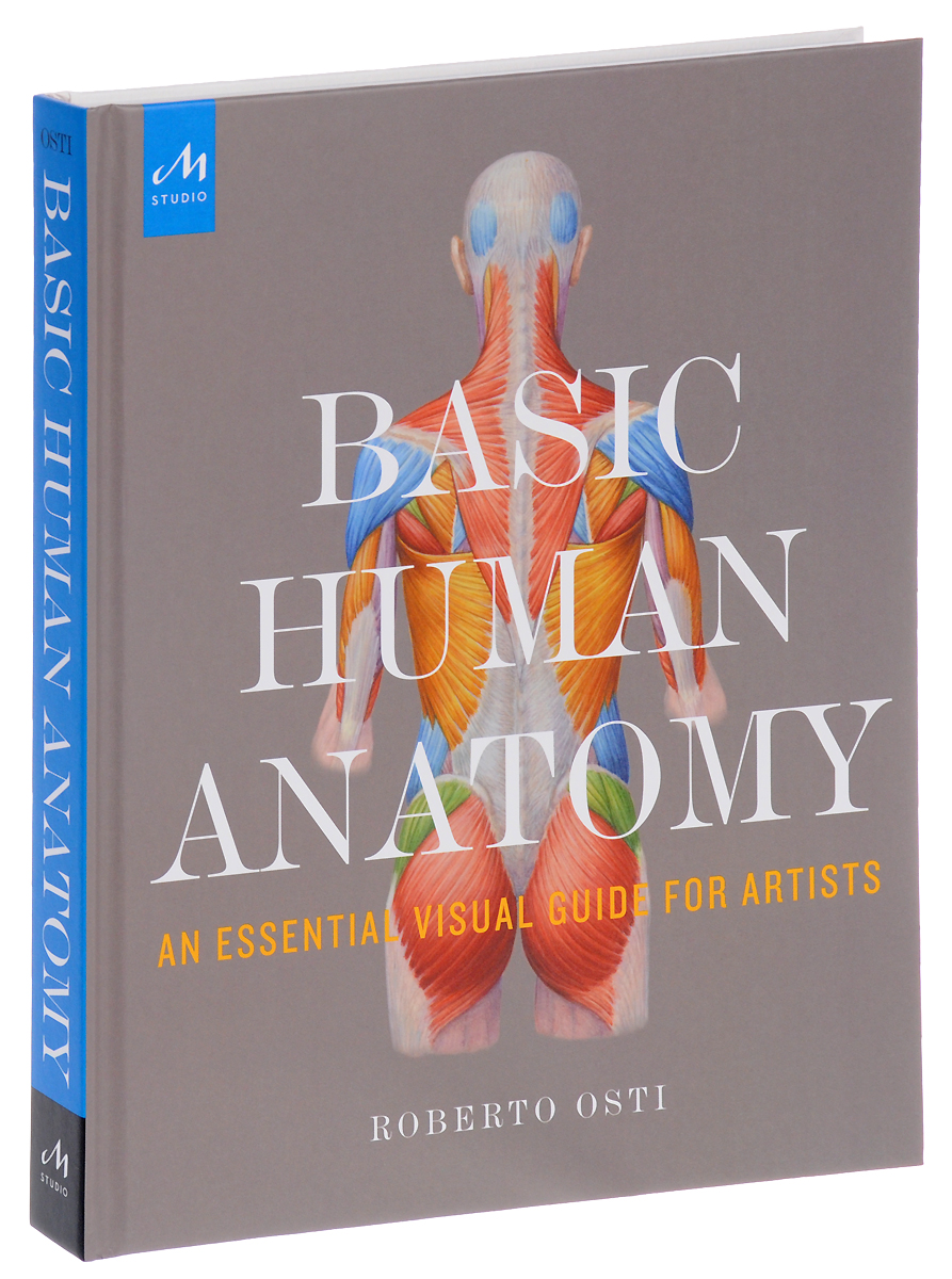 Basic Human Anatomy: An Essential Visual Guide for Artists textbook of human anatomy volume 1 locomotor apparаtus