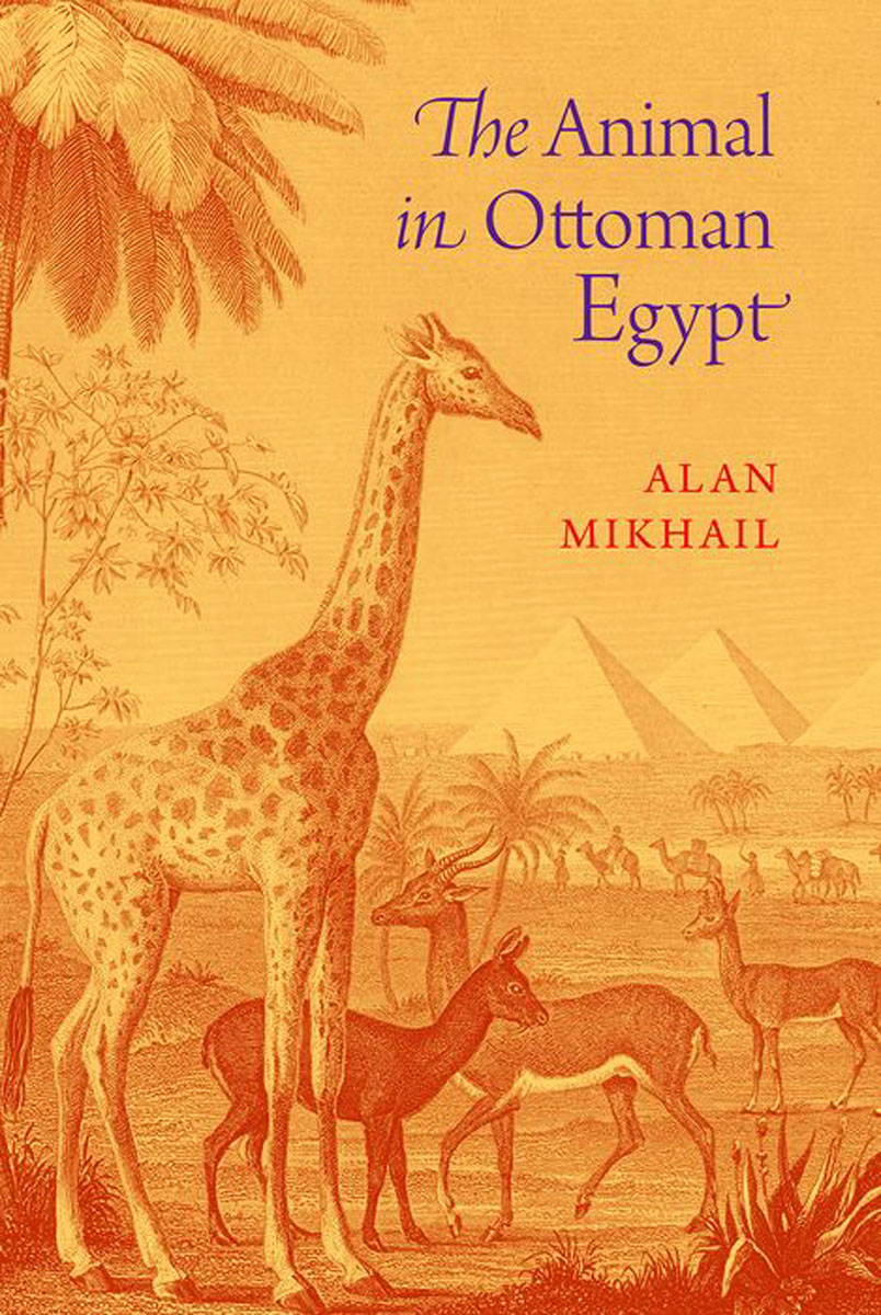 The Animal in Ottoman Egypt montserrat guibernau belonging solidarity and division in modern societies
