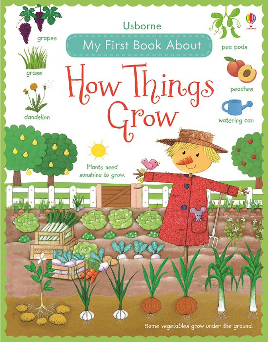 My First Book About How Things Grow my first book about food