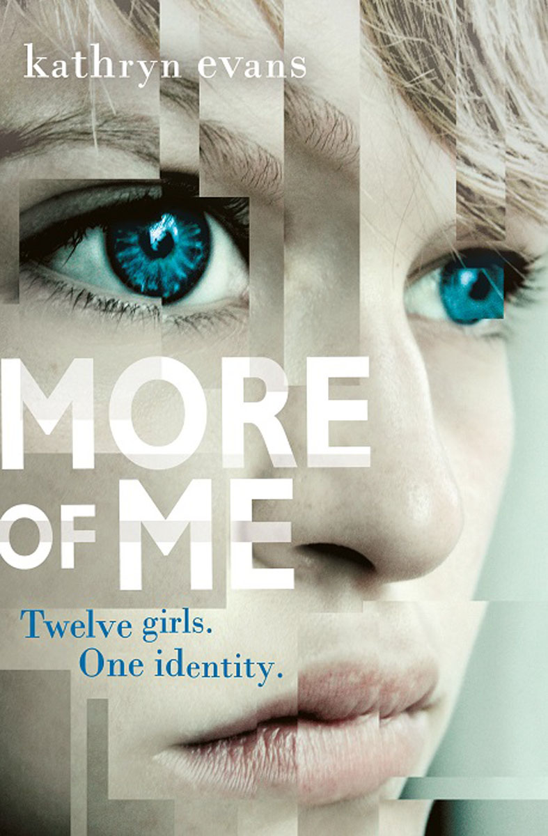 More of Me paula mclain like family growing up in other people s houses a memoir