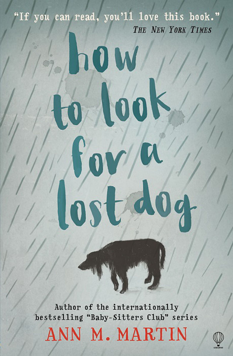 How to Look for a Lost Dog rain drops in her heart
