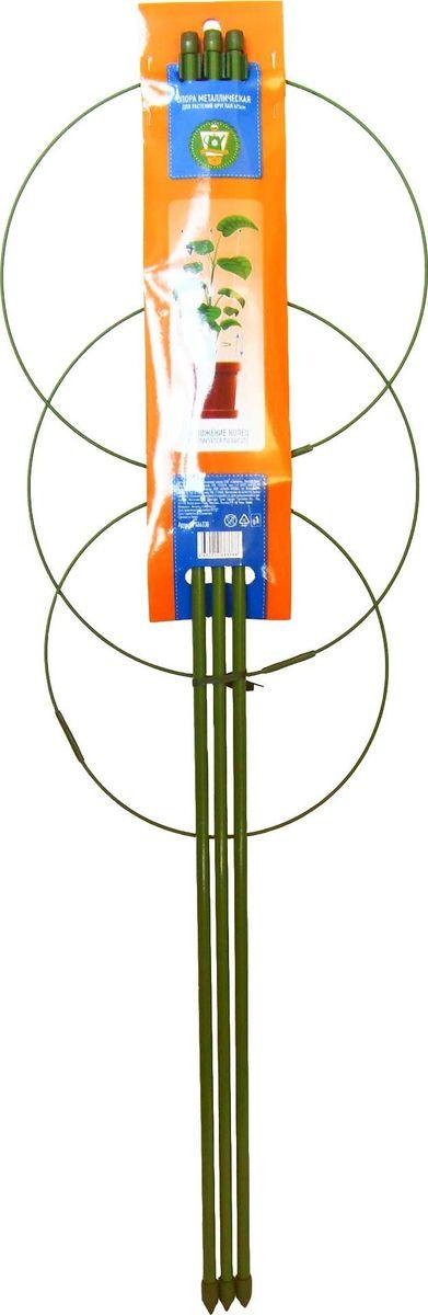 Опора для растений Garden Show, круглая (3 кольца), высота 75 см466338Опора для растений с 3 кольцами Garden Show выполнена из металла и защищена пластиковой оплеткой, которая предотвращает появление коррозии. Такая опора используется для поддержки садовых и комнатных растений. Также незаменима при создании сложных декоративных конструкций на балконах, террасах и дачных участках. Легко и без усилий устанавливается в грунт и надежно закрепляется. Изделие можно использовать круглый год, оно не выгорает на солнце, не деформируется от мороза и сохраняет неизменный внешний вид даже после долгой эксплуатации.