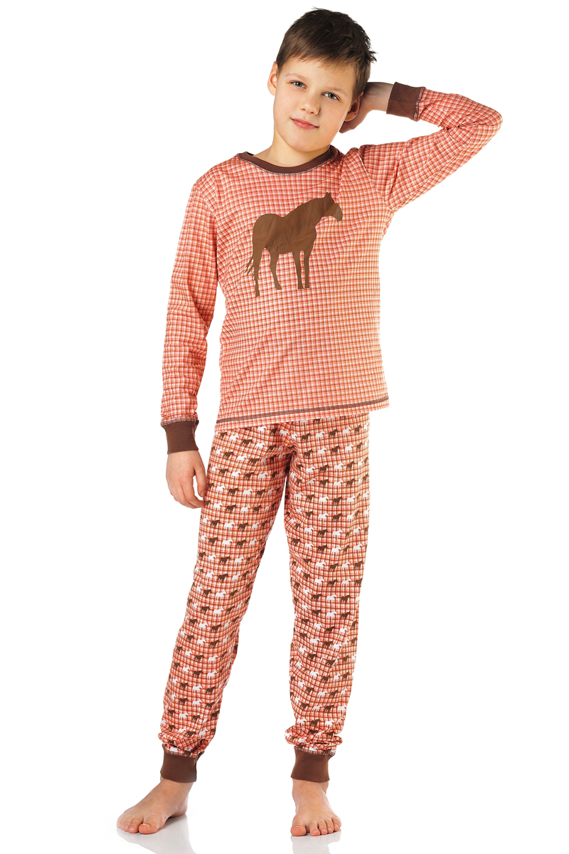 Пижама для мальчика Lowry, цвет: коричневый. BPG-77. Размер M (110/116)BPG-77Пижама Lowry выполнена из качественного материала. Лонгслив с круглым вырезом горловины. Брюки с эластичной резинкой на талии.