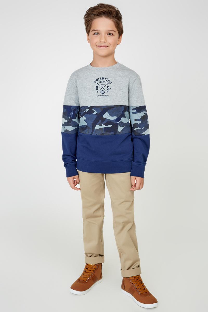Свитшот для мальчика Acoola Lupine, цвет: серый, темно-синий. 20110310036_8000. Размер 134 lupine betty r x10