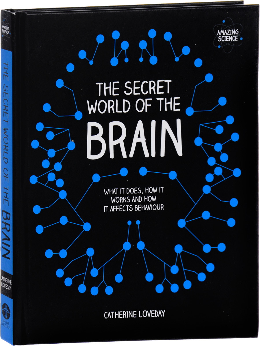 The Secret World of the Brain get smart our amazing brain