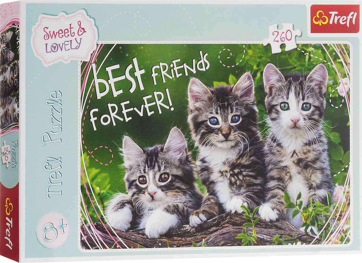 Trefl Пазл Дружные котята
