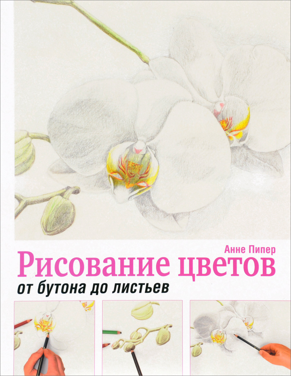 Анне Пипер Рисование цветов от бутона до листьев книга для записей с практическими упражнениями для здорового позвоночника