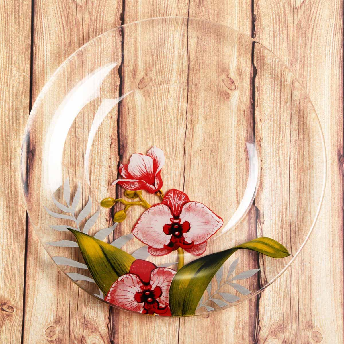 Тарелка Sima-land Орхидеи , диаметр 20 см2196445Красивая тарелка с рисунком дополнит праздничный стол, ведь прозрачное стекло выглядит элегантно и стильно.Предмет можно использовать в микроволновой печи и посудомоечной машине.При бережном обращении изделие будет радовать вас безукоризненным внешним видом долгие годы.