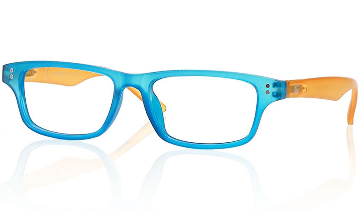 CentroStyle Очки для чтения +1.00, цвет: голубой60760Готовые очки для чтения - это очки с плюсовыми диоптриями, предназначенные для комфортного чтения для людей с пониженной эластичностью хрусталика. Очки итальянской марки Centrostyle - это модные и незаменимые в повседневной жизни аксессуары. Более чем двадцати летний опыт дизайнеров компании CentroStyle гарантирует комфорт и качество.