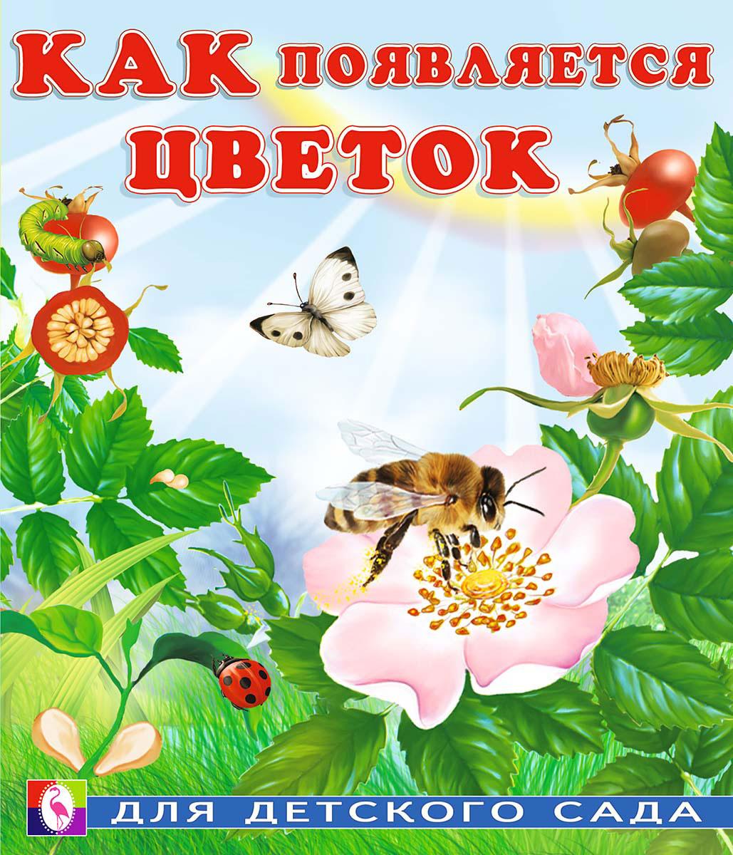 Как появляется цветок