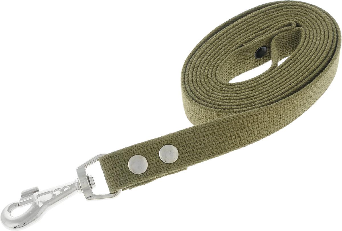 Поводок брезентовый для собак Adel-Dog, ширина 2,5 см, длина 3 м990816Поводок для собак Adel-Dog, изготовленный из высококачественной брезентовой ткани, снабжен металлическим карабином. Изделие отличается не только исключительной надежностью и удобством, но и привлекательным дизайном.Поводок - необходимый аксессуар для собаки. Ведь в опасных ситуациях именно он способен спасти жизнь вашему любимому питомцу. Иногда нужно ограничивать свободу своего четвероногого друга, чтобы защитить его или себя от неприятностей на прогулке. Длина поводка: 3 м.Ширина поводка: 2,5 см.