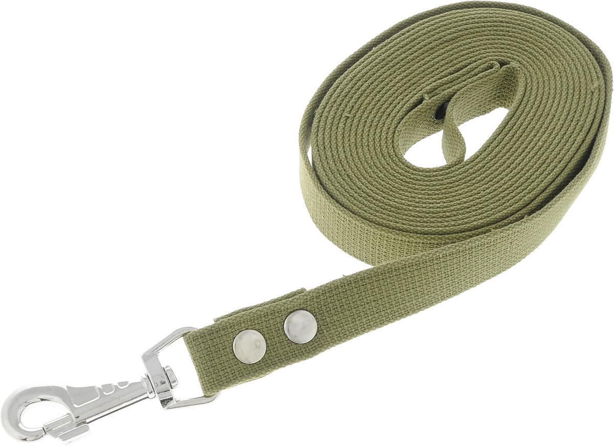 Поводок брезентовый для собак Adel-Dog, ширина 2,5 см, длина 5 м990823Поводок для собак Adel-Dog, изготовленный из высококачественной брезентовой ткани, снабжен металлическим карабином. Изделие отличается не только исключительной надежностью и удобством, но и привлекательным дизайном.Поводок - необходимый аксессуар для собаки. Ведь в опасных ситуациях именно он способен спасти жизнь вашему любимому питомцу. Иногда нужно ограничивать свободу своего четвероногого друга, чтобы защитить его или себя от неприятностей на прогулке. Длина поводка: 5 м.Ширина поводка: 2,5 см.