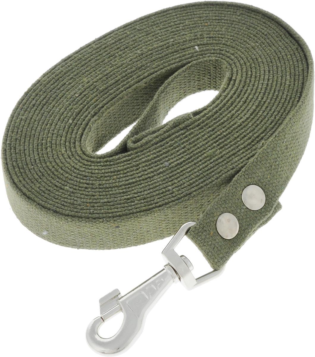 Поводок брезентовый для собак Adel-Dog, ширина 2,5 см, длина 7 м990830Поводок для собак Adel-Dog, изготовленный из высококачественной брезентовой ткани, снабжен металлическим карабином. Изделие отличается не только исключительной надежностью и удобством, но и привлекательным дизайном.Поводок - необходимый аксессуар для собаки. Ведь в опасных ситуациях именно он способен спасти жизнь вашему любимому питомцу. Иногда нужно ограничивать свободу своего четвероногого друга, чтобы защитить его или себя от неприятностей на прогулке. Длина поводка: 7 м.Ширина поводка: 2,5 см.