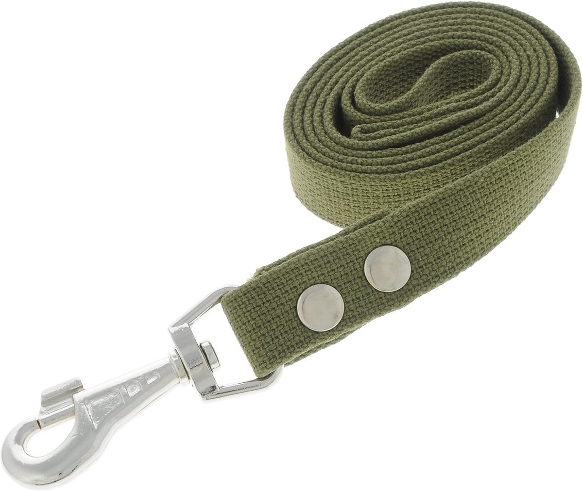 Поводок брезентовый для собак Adel-Dog, ширина 2,5 см, длина 1,5 м990793Поводок для собак Adel-Dog, изготовленный из высококачественной брезентовой ткани, снабжен металлическим карабином. Изделие отличается не только исключительной надежностью и удобством, но и привлекательным дизайном.Поводок - необходимый аксессуар для собаки. Ведь в опасных ситуациях именно он способен спасти жизнь вашему любимому питомцу. Иногда нужно ограничивать свободу своего четвероногого друга, чтобы защитить его или себя от неприятностей на прогулке. Длина поводка: 1,5 м.Ширина поводка: 2,5 см.