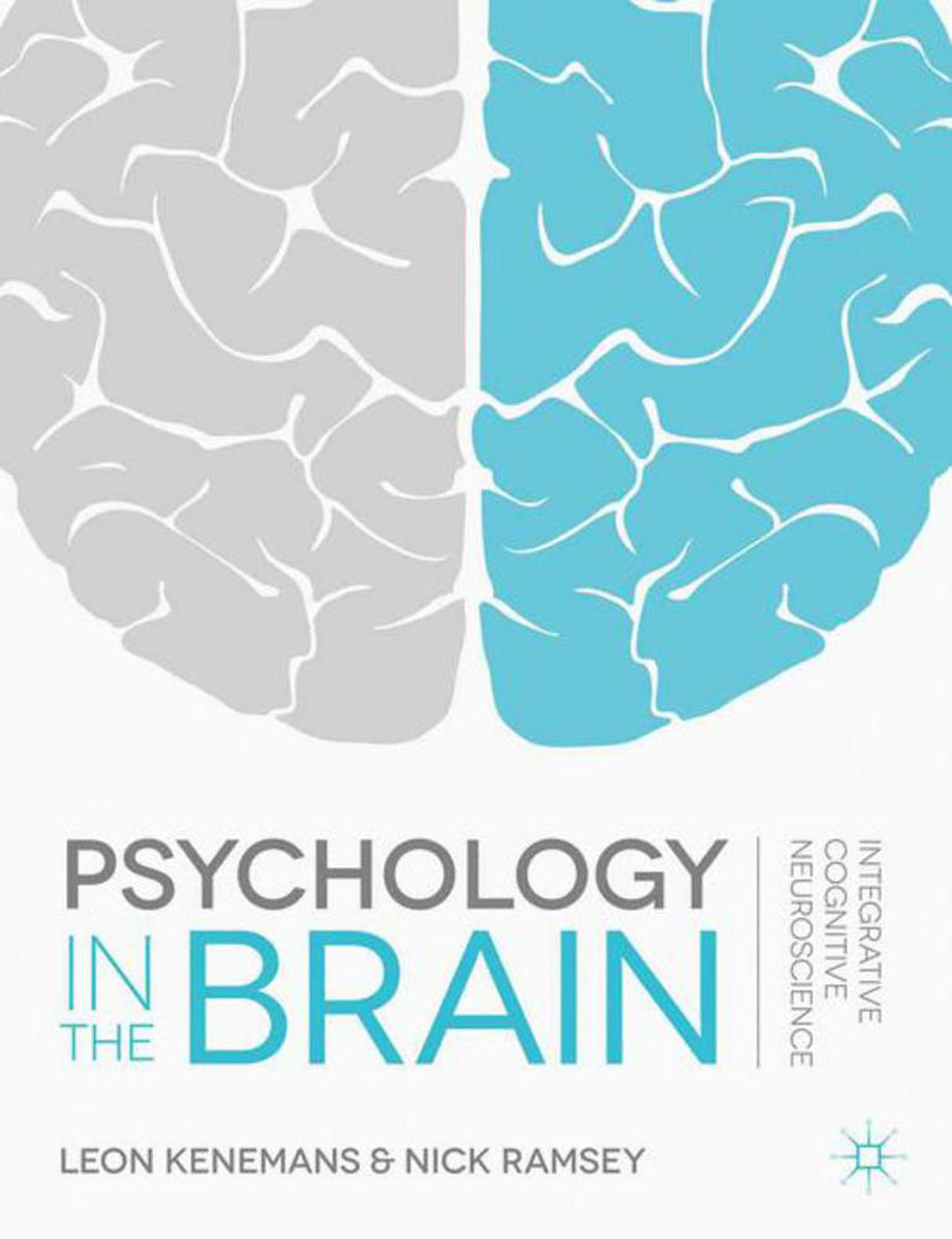 Psychology in the Brain ben buchanan brain structure and circuitry in body dysmorphic disorder