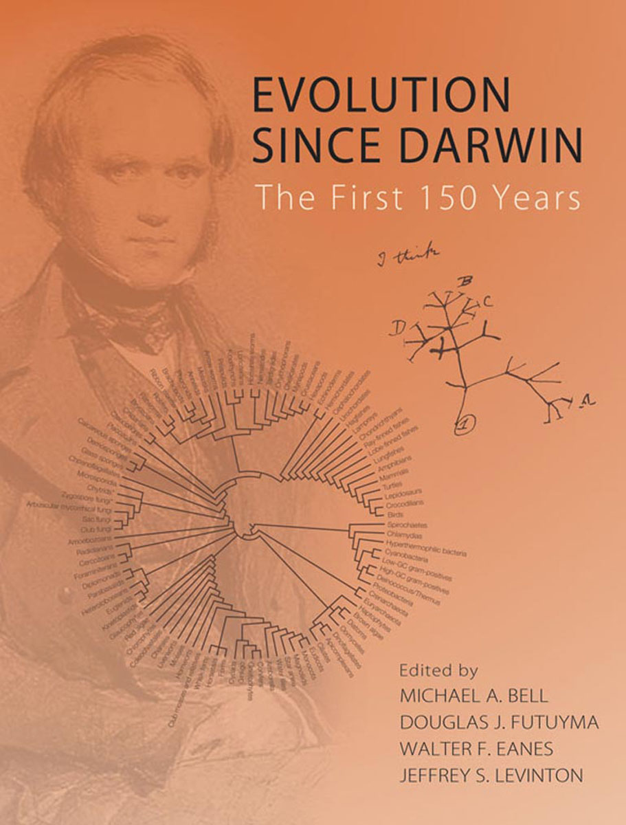 Evolution since Darwin evolution development within big history evolutionary and world system paradigms