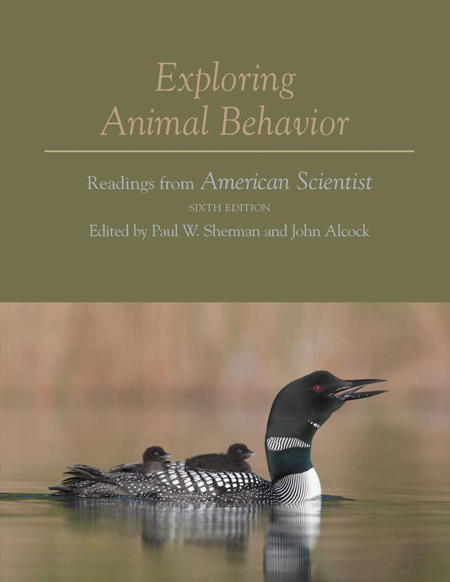 Exploring Animal Behavior