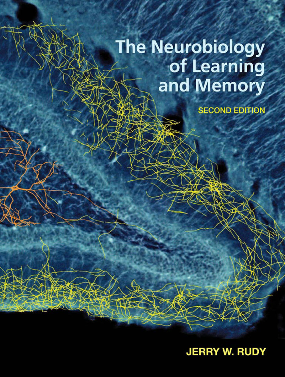 The Neurobiology of Learning and Memory neurobiology of epilepsy and aging 81