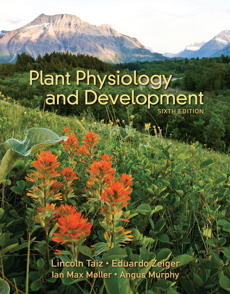 Plant Physiology and Development development of a computational interface for small hydropower plant