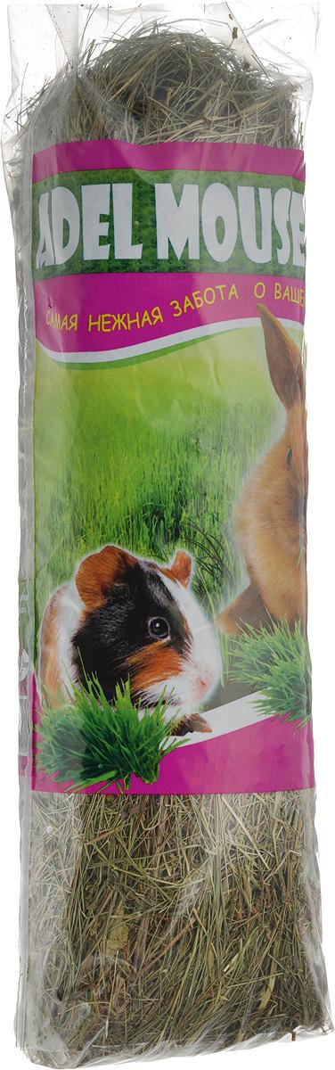 Сено Adel Mouse Разнотравье луговое, 20 л991745Сено Adel Mouse Разнотравье луговое - сбор луговых трав, 100% натуральный продукт. Разнотравье лугового сена является гигиенической подстилкой, состоящей из высушенных стеблей тщательно отобранных луговых трав с содержанием большого количества клетчатки, что стимулирует пищеварение и защиту зубов у кроликов и травоядных грызунов. Высокое качество данной продукции достигается с помощью нескольких стадий обработки сырья.