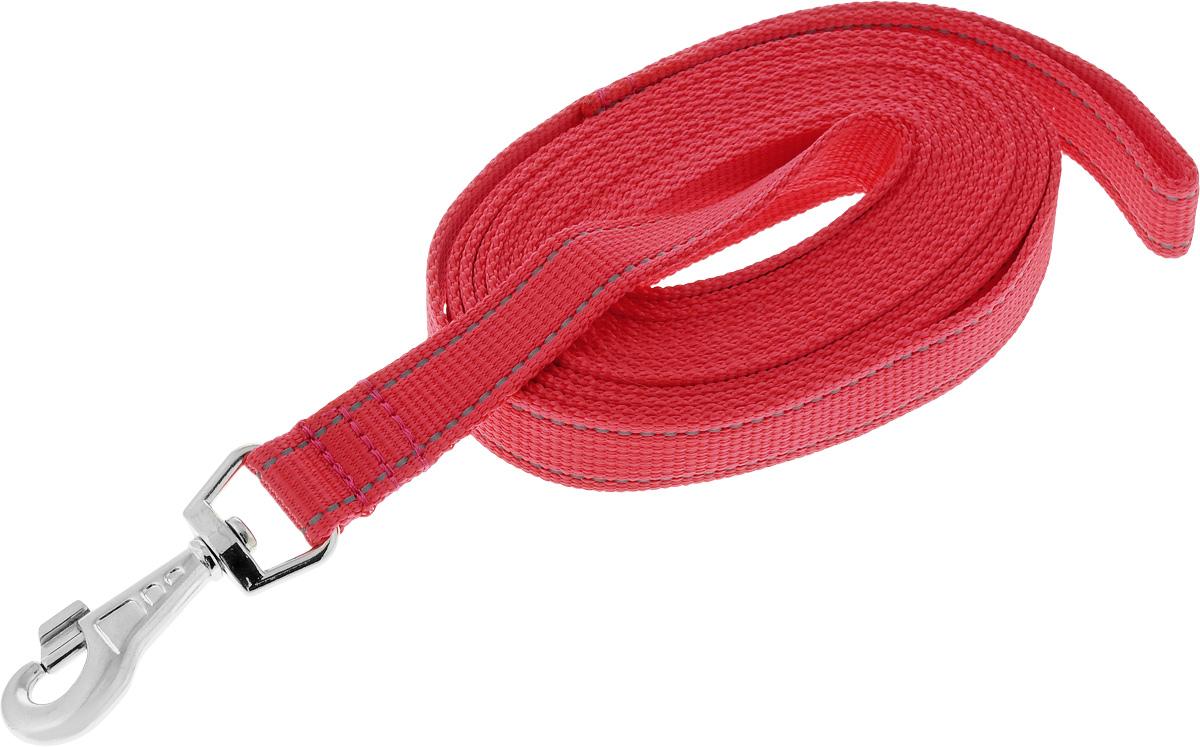 Поводок капроновый для собак Аркон, цвет: красный, ширина 2,5 см, длина 5 мпк5м25_красныйПоводок для собак Аркон изготовлен из высококачественного цветного капрона и снабжен металлическим карабином. Изделие отличается не только исключительной надежностью и удобством, но и привлекательным современным дизайном.Поводок - необходимый аксессуар для собаки. Ведь в опасных ситуациях именно он способен спасти жизнь вашему любимому питомцу. Иногда нужно ограничивать свободу своего четвероногого друга, чтобы защитить его или себя от неприятностей на прогулке. Длина поводка: 5 м.Ширина поводка: 2,5 см.