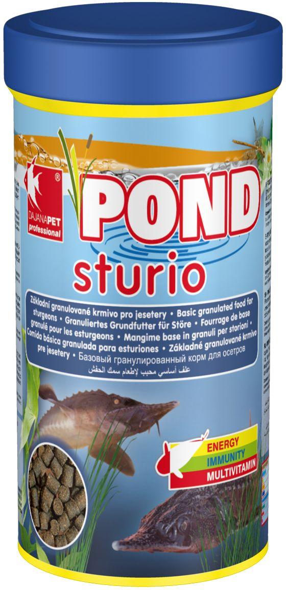 Корм для прудовых рыб Dajana Pond Studio, 1 л (600 г)DP310DКомплексный корм для стерляди и других видов рыб, обитающих на дне декоративных садовых прудов. Способствует здоровому пищеварению прудовых рыбок, повышает иммунитет, помогая избежать болезней внутренних органов. Подходит для кормления в течение любого сезона.