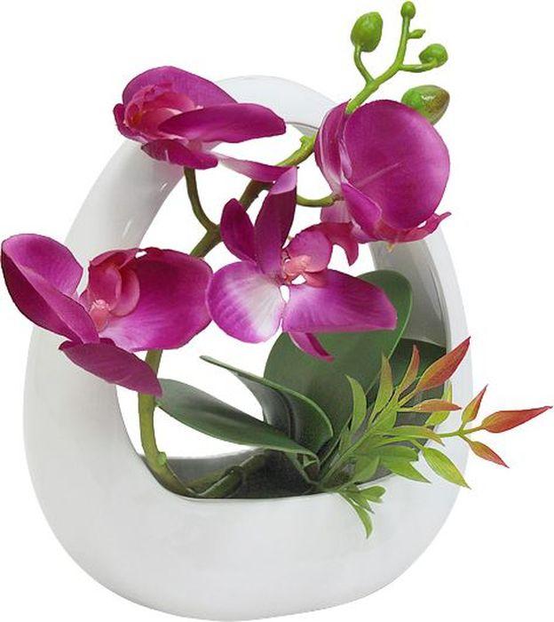 """Цветы декоративные Dream Garden """" Орхидея темно-сиреневая"""" выполнены из искусственного шелка и текстиля. Искусственные цветы максимально приближены к натуральным, не пахнут, что исключает все аллергические реакции. Цветы подойдут для декоративного оформления интерьеров и создают цветочное настроение. Цветы установлены в оригинальную вазу из керамики. Декоративные цветы - это прекрасный подарок в любой дом!"""