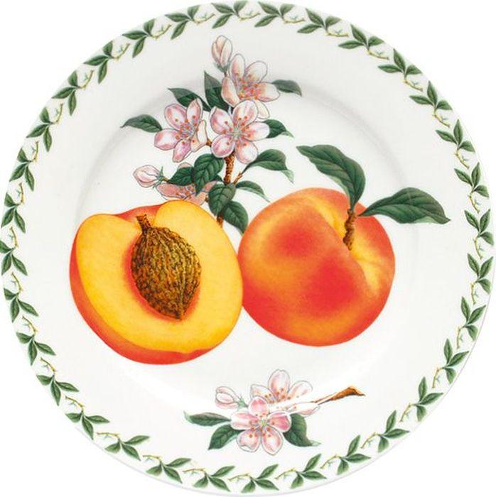 """Тарелка Maxwell & Williams """"Абрикос"""" выполнена из высококачественного фарфора и имеет классическую круглую форму. Она прекрасно впишется в интерьер вашей кухни и станет достойным дополнением к кухонному инвентарю. Она подчеркнет прекрасный вкус хозяйки и станет отличным подарком."""