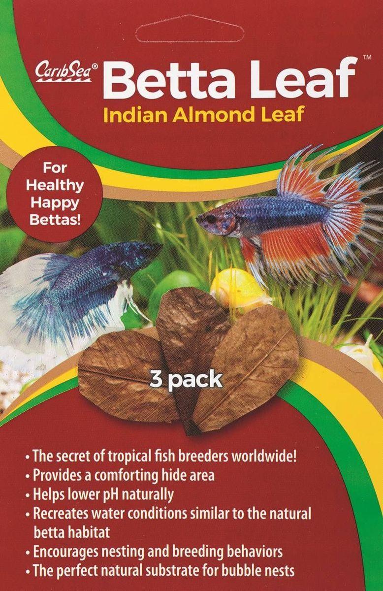Листья индийского миндаля Caribsea Betta Leaf, 3 шт00650Листья индийского миндального дерева Caribsea Betta Leaf являются отличными кондиционерами, устраняют раздражающее действие воды, воссоздают водные условия, аналогичные пресноводной тропической среде обитания, немного снижают рН, улучшают окраску рыб. Листья индийского миндального дерева незаменимы при разведении креветок, цихлид, лабиринтовых рыб. Идеальный естественный субстрат для пузырьковых гнёзд.