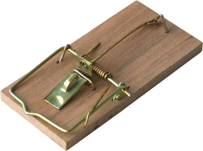 Мышеловка деревянная BROS, 1 шт710262Мышеловка BROS выполнена из дерева. Традиционно проверенная конструкция, с использованием подходящего сорта дерева.