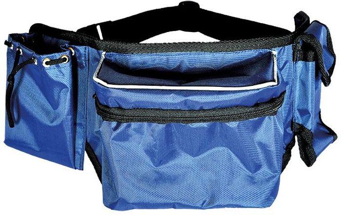 Сумка поясная для корма Зооник, цвет: синий, 47 х 8 х 17 см22421Нейлоновая поясная сумка для корма Зооник идеально подходит для лакомств, крепиться на на пояс. Подходит для дрессировок. Есть место для хранения игрушек с дополнительным жестким карманом. Легко моется, кант светоотражающий. Идеально подходит для прогулок в темное время суток.