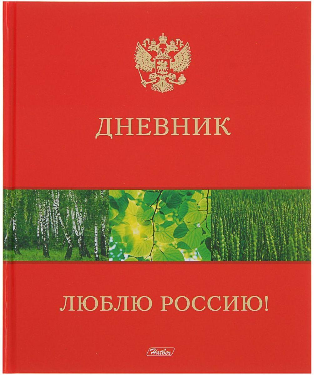 Hatber Дневник школьный Люблю Россию!2012701