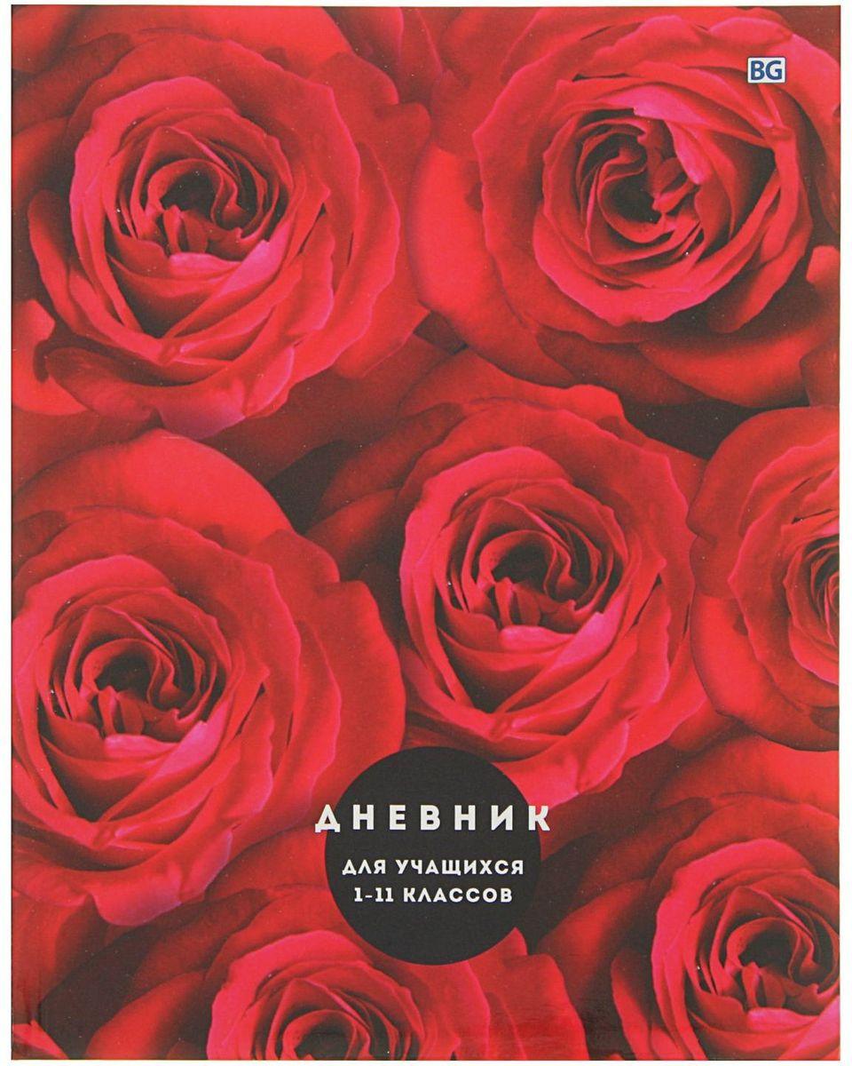 BG Дневник школьный Испанская роза2080430
