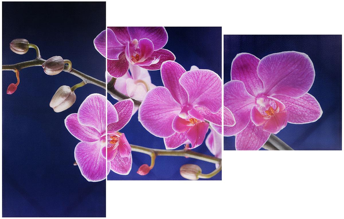 """Модульная картина Toplight """"Цветы. Орхидеи"""" выполнена из синтетического полотна, подрамник из МДФ.  Картина состоит из трех частей и выглядит очень аккуратно и эстетично благодаря способу оформления под названием галерейная натяжка.  Подрамник исключает провисание полотна.  Современные технологии, уникальное оборудование и цифровая печать, используемые в производстве, делают постер устойчивым к выцветанию  и обеспечивают исключительное качество произведений.  Благодаря наличию необходимых креплений в комплекте установка не займет много времени.   Модульная картина - это прекрасная возможность создать яркий акцент при оформлении любого помещения. Изделие обязательно привлечет  внимание и подарит немало приятных впечатлений своим обладателям.   Правила ухода: можно протирать сухой, мягкой тканью.   Рекомендованное расстояние между сегментами: 2 см.  Толщина подрамника: 3 см. Размер модулей: 100 х 50 см, 70 х 50 см, 50 х 50 см. Общий размер картины: 150 х 100 см."""