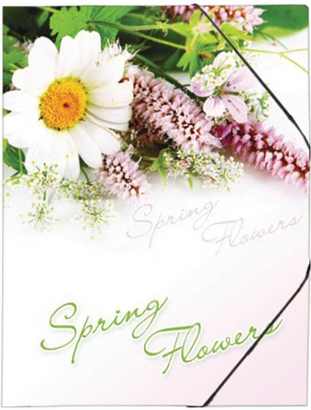 Berlingo Папка на резинке Spring Flowers папка пластиковая для документов