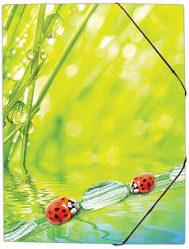 Berlingo Папка на резинке Ladybird папка пластиковая для документов