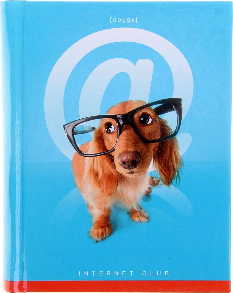 Бриз Блокнот Собака 160 листов в клетку1067691Блокнот Бриз Собака формата A6 отлично подойдет для записи важной информации. Обложка выполнена из высококачественного картона. Внутренний блок содержит 160 листов в клетку.Все планы и записи всегда будут у вас перед глазами.
