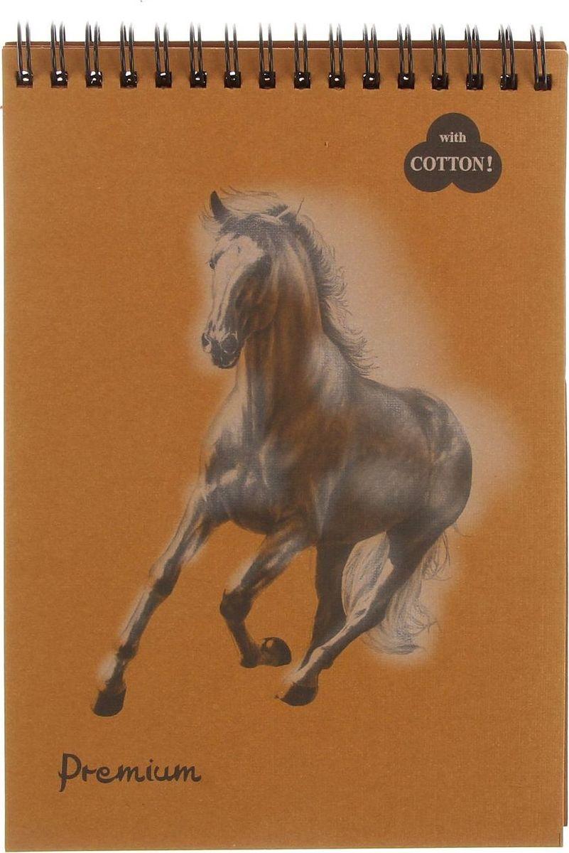 Лилия Холдинг Блокнот Premium Cinnamon 30 листов1278071