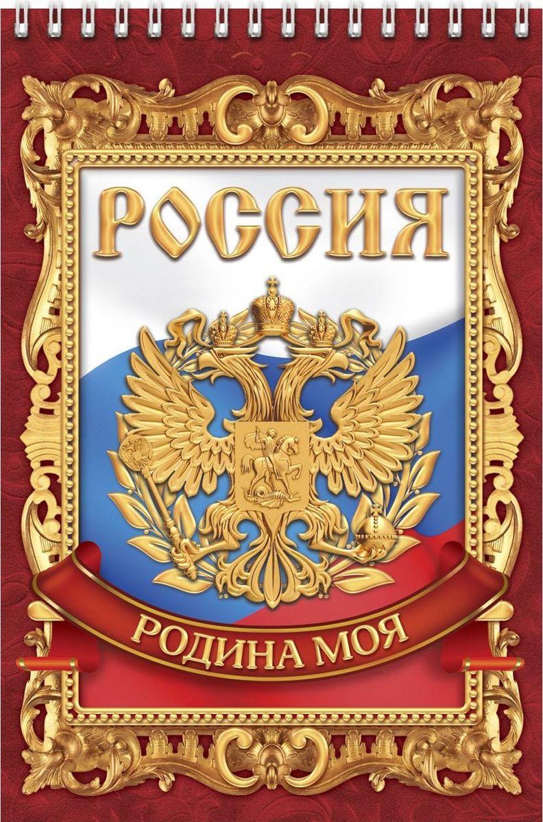 Блокнот Россия родина моя 40 листов блокнот 60л феникс а5 прогресс на спирали