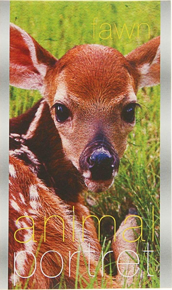 ТетраПром Блокнот Animal Portret 32 листа1771592Блокнот ТетраПром Animal Portret - компактное и практичное полиграфическое изделие, предназначенное для записей и заметок. Такой аксессуар прекрасно подойдёт для фиксации повседневных дел.Это канцелярское изделие отличается красочным оформлением и придётся по душе как взрослому, так и ребёнку.