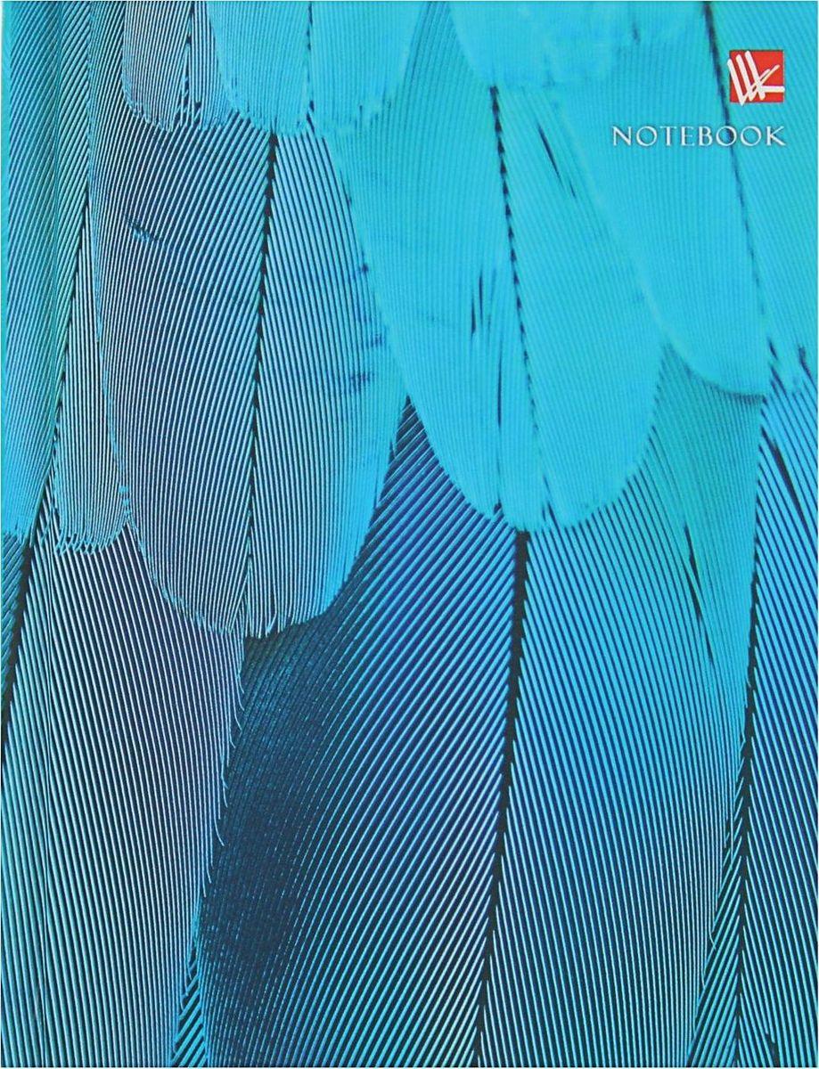 Эксмо Бизнес-блокнот Живая планета Голубое оперение 80 листов книги эксмо живая шляпа